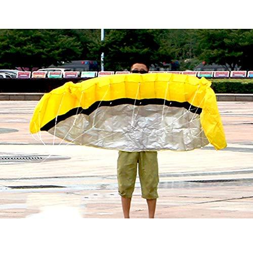XQDSP H Kites 2,5m Symphony Beach twee-lijn zachte lichaam paraplu Kite Stunt Sport Kite