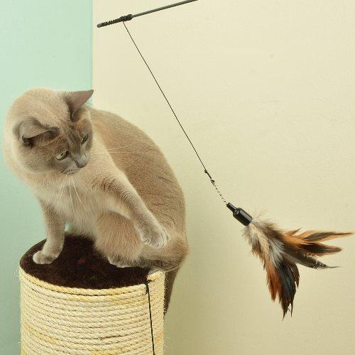The Natural Pet Company Interaktives Katzenspielzeug mit Federn, inkl. 2 Ersatzfedern - 5