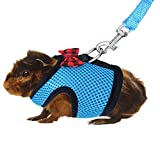 Orgrimmar Rabbits Harness with Elastic Leash Set Suitable for Small Pets Cat Guinea Pig Ferret and Other Animal Chest Strap Set