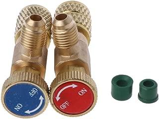 YUYUE21 (2 Modelos/Juego válvula de Seguridad de Cobre y flúor (Rojo R410 + Azul R22)