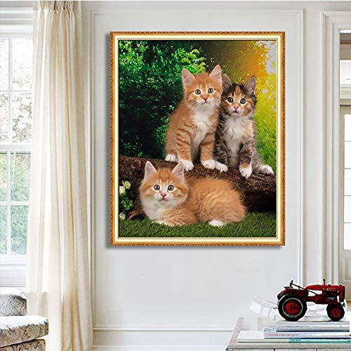SHQBZPYS 5D Knutselen diamant schilderij kat luier landschap band tekening diamant borduurwerk