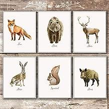Vintage Woodland Animals Art Prints (Set of 6) - Unframed - 8x10s