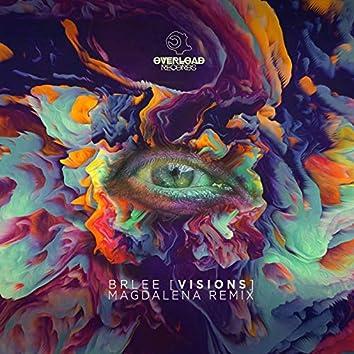 Visions (Magdalena Remix)
