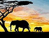 TONZOM DIY Pintar por Numeros para Adultos y Principiantes Elefante al Atardecer 40x50cm Pintura de Bricolaje con Pinceles y Pinturas Decoración del Hogar Sin Marco