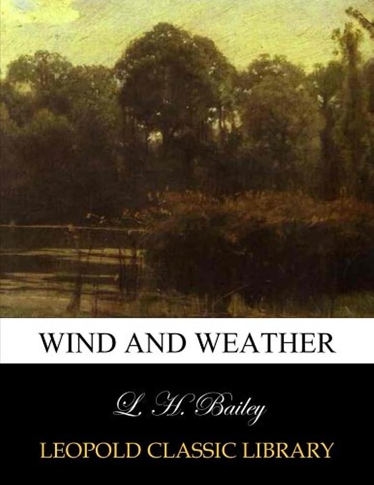 名目上の矛盾ご飯Wind and weather