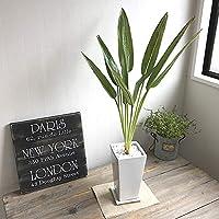 ストレチア2本立 四角鉢 造花 インテリア 観葉植物 フェイクグリーン