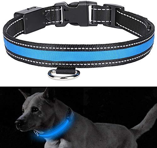 YOUTHINK Collar de Perro LED Collar de Perro Resistente al Agua Que Brilla Solar USB Recargable Luz LED Intermitente Noche de Seguridad Collares de Nylon para Mascotas (Azul, L)