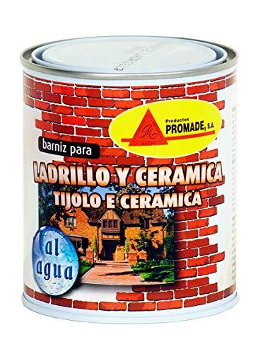 Promade - Barniz para Ladrillo, Cerámica y Piedra. Al Agua Incoloro Semi Brillo -4 L