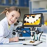 4YANG Microscopio Digital LCD de 7' Ampliación 1200X, Microscopio de Video 1080P con Soporte de Aleación de Zinc, Enfoque Ultrapreciso, 8 Luces LED, Compatible con Windows/Mac OS, con 12 Idiomas