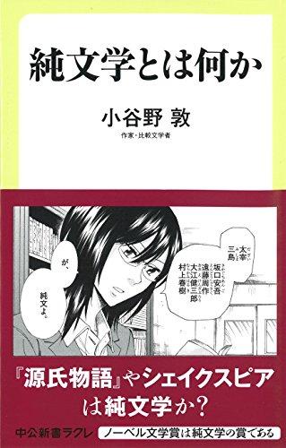 純文学とは何か (中公新書ラクレ)