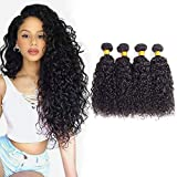 Brazilian Kinky Curly Virgin Hair Bundles 14 16 18 20, Brazilian Curly Hair Brazilian Virgin hair Kinky Curly Human Hair Weave