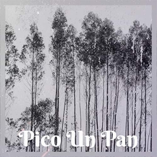 Pico Un Pan