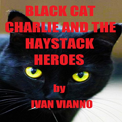 Black Cat Charlie and the Haystack Heroes audiobook cover art