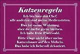 FS Spruch Katzenregeln Blechschild Schild gewölbt Metal Sign 20 x 30 cm