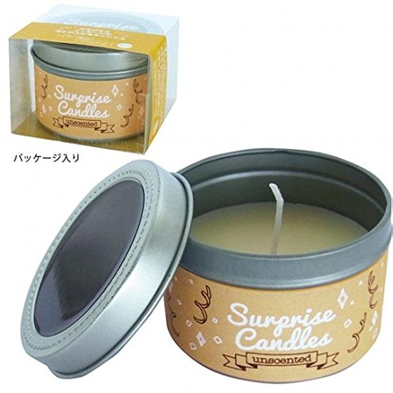 カテナ解釈的平衡kameyama candle(カメヤマキャンドル) サプライズキャンドル 「無香」(A207005010)