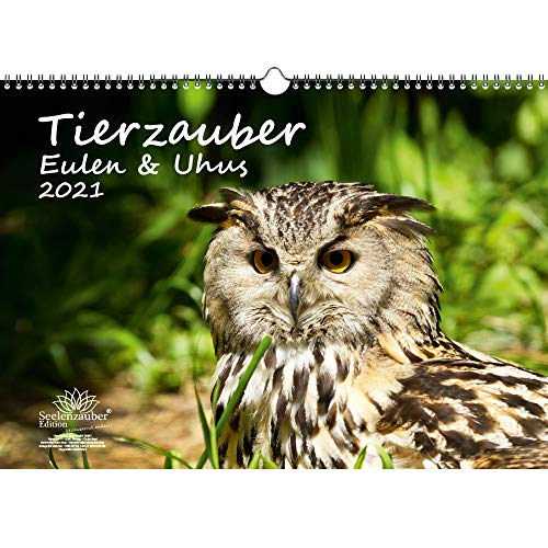 Tierzauber Eulen und Uhus DIN A3 Kalender für 2021 - Geschenkset Inhalt: 1x Kalender, 1x Weihnachts- und 1x Grußkarte (insgesamt 3 Teile)