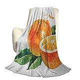 Fruta Súper Suave y cálida Manta Decorativa Acuarela Estilizada Naranja Dulce Yummy Cocina Motivo de Invierno orgánico Natural Hermosa decoración para el hogar W60 x L50 Inch Marigold Fern G