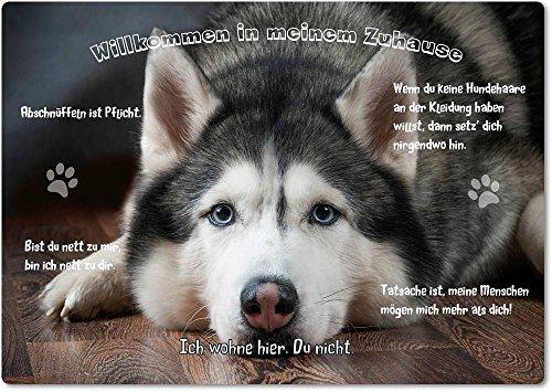 Merchandise for Fans Blechschild/Warnschild/Türschild - Aluminium - 20x30cm - - Willkommen in Meinem Zuhause - Motiv: Husky Schlittenhund Siberian Husky - 07