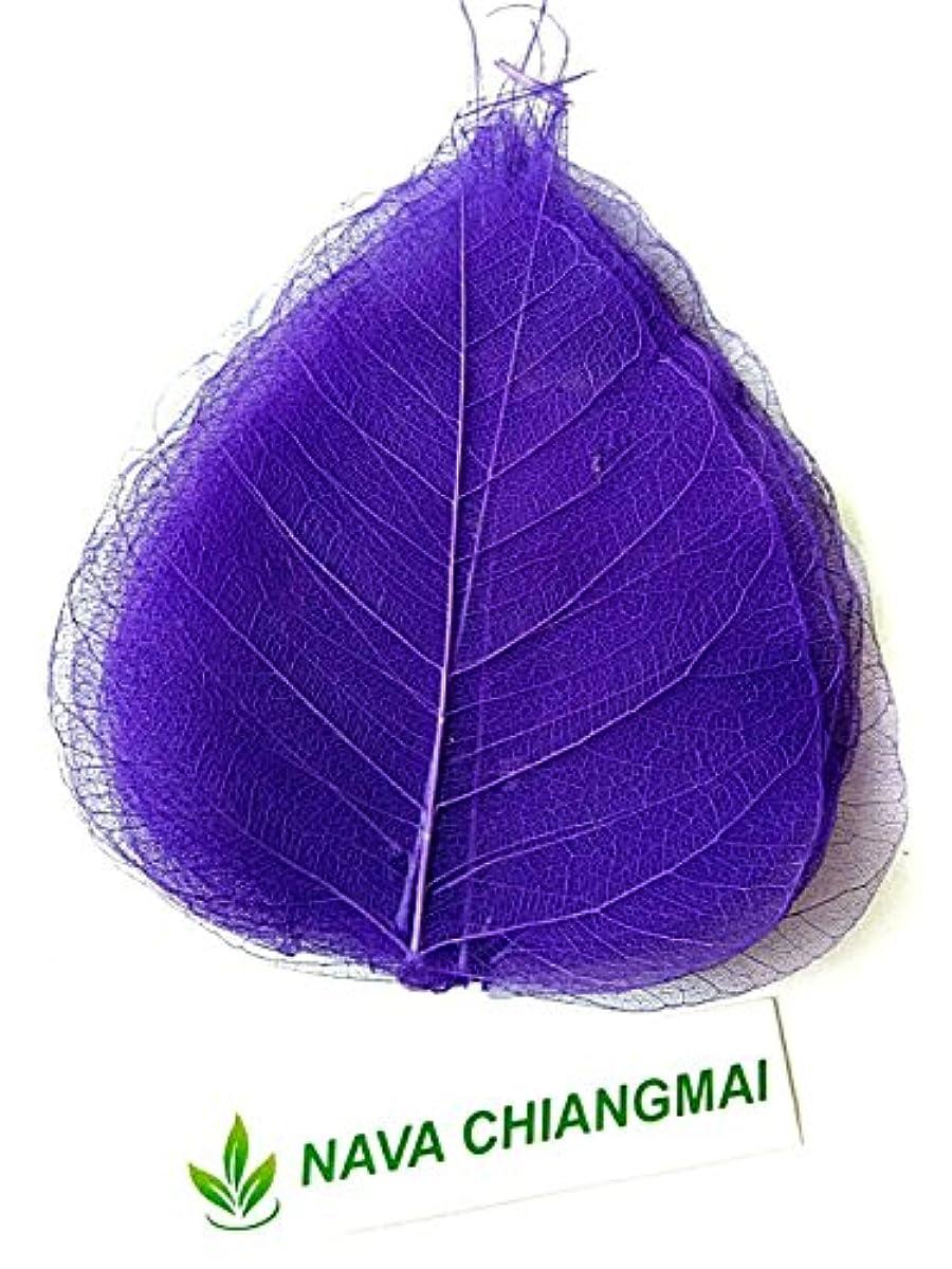 NAVA CHIANGMAI Skeleton Natural Ficus Religiosa Leaves Artificial Leaves Craft Card Scrapbooking DIY Embellishment Decoration Art Greeting Cards Wedding Gifts Seasonal Gift (Purple)
