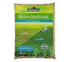 Rasen-Nachsaat