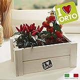 Caja decorativa para hierbas de cocina de madera con semillas de tomate de cerezo de guindillas de 26 x 16 x 11 cm.