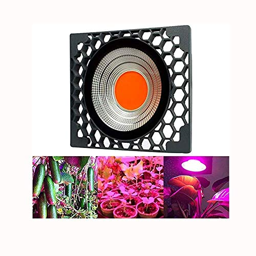 SXFYHXY Full Spectrum Plant LED Light Cooling Plant Growth Light Waterproof 1000W Light Effect Fill Light, for Succulents and Seed Starting