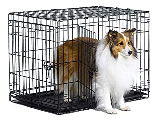 """New World 30"""" Double Door Folding Metal Dog Crate, Includes Leak-Proof Plastic Tray; Dog Crate Measures 30L x 19W x 21H Inches, For Medium Dog Breeds (B01DLS2F14) 