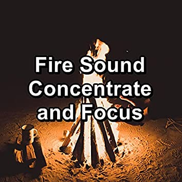 Fire Sound Concentrate and Focus