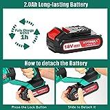 Zoom IMG-2 hychika 18v batteria ricaricabile agli