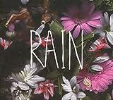 Songtexte von Goodtime Boys - Rain
