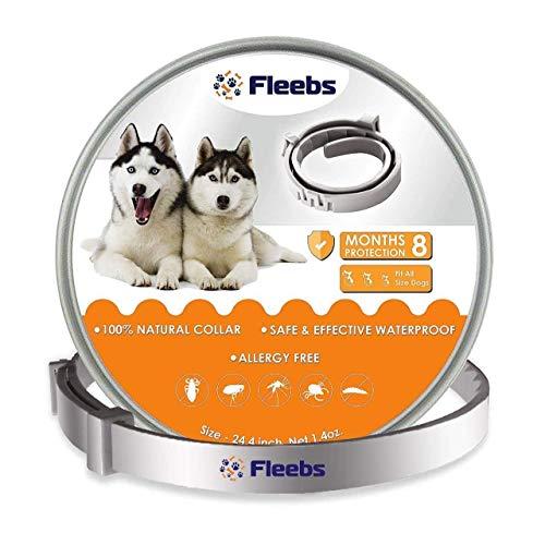 U-picks Set Guinzaglio per Cani 1,5M Robusto Guinzaglio per Cani con Comoda Impugnatura Imbottita.Adatto per Cani di Taglia Piccola Media e Grande