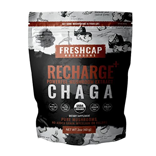Organic Chaga Mushroom Extract Powder - USDA Organic -60 g- Supplement - Balance and Restore - Add to Coffee/Tea/Smoothies-Real Fruiting Body No Fillers