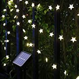 Xingpold Solar Star String Lights Outdoor,Waterproof Solar Powered Christmas Twinkle Fairy String Lights,23FT 50LED 8Modes Solar Lights Outdoor String for Garden Landscap Lawn Patio Fence (Warm White)
