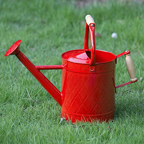 HORTICAN Galvanized Watering Can Modern Style Watering Pot with Handle and Rosehead for Outdoor and Indoor House Plants(1 gal/Red)