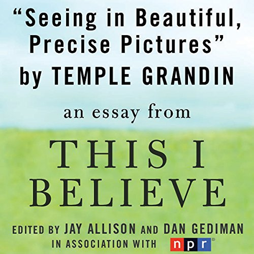 Seeing in Beautiful, Precise Pictures audiobook cover art