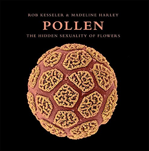 Pollen: The Hidden Sexuality of Flowers