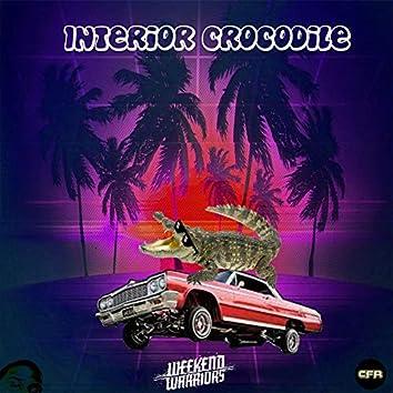 Interior Crocodile