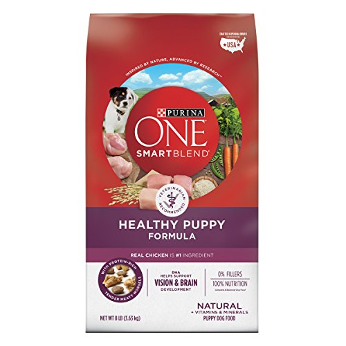 Purina ONE Dry Puppy Food