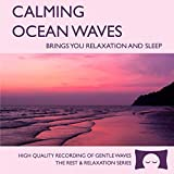 60 minutes of calming ocean waves. Relax and drift off to sleep to the rhythm of real ocean waves. No crashing surf, cawing seagulls, jarring thunder, or cheesy music. Nothing but peaceful waves. Creates white noise to drown out household sounds. Hel...