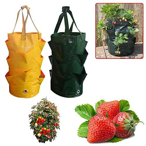Annie Bolsa de siembra de Fresa Colgante de 3 galones Bolsa de Cultivo de jardinería de Flores Vegetales, para Cultivar al Aire Libre (Verde + Amarillo)