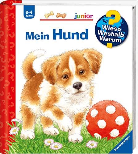Wieso? Weshalb? Warum? junior: Mein Hund (Band 41) (Wieso? Weshalb? Warum? junior, 41)