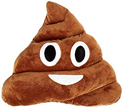This fun pillow is a great toilet and poo themed gifts idea.