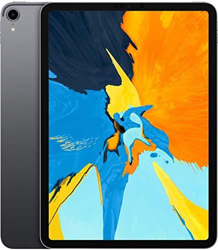 Apple iPad Pro 11 256GB Wi-Fi - Grigio Siderale (Ricondizionato)