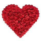 BESKIT 3000 Pieces Rose Petals Artificial Flower Silk Petals for Valentine Day Wedding Flower Decoration (Dark Red)