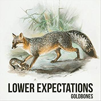 Lower Expectations