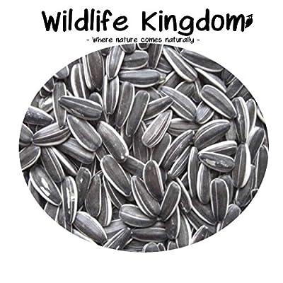Wildlife Kingdom Premium Striped Sunflower Seeds Parrot Parakeet Wild Garden Bird Seed Energy ? (2kg) from Wildlife Kingdom