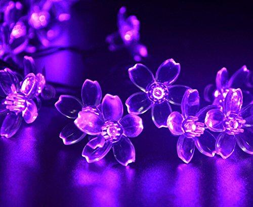 CAOLATOR - 7M 50-LED Fleur de pêche Alimentée Rotin pour Alimentée pour Noël, Fête, Mariage, Soirée d'anniversaire, Décoration,Mariage, Patry, Decoration Maison (Charge Solaire)