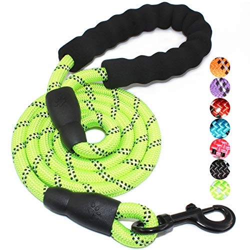 "BAAPET 5 FT Strong Dog Leash with Comfortable Padded Handle and Highly Reflective Threads for Small Medium and Large Dogs (1/2"", Green)"