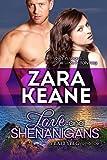 Bargain eBook - Love and Shenanigans