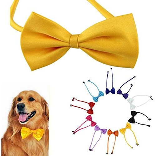 Bazaar Chiens multicolores animaux noeud papillon chien cravate chat cravate animaux toilettage fournitures